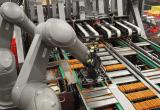 robot used on food production