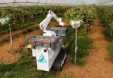 robotic fruit picker